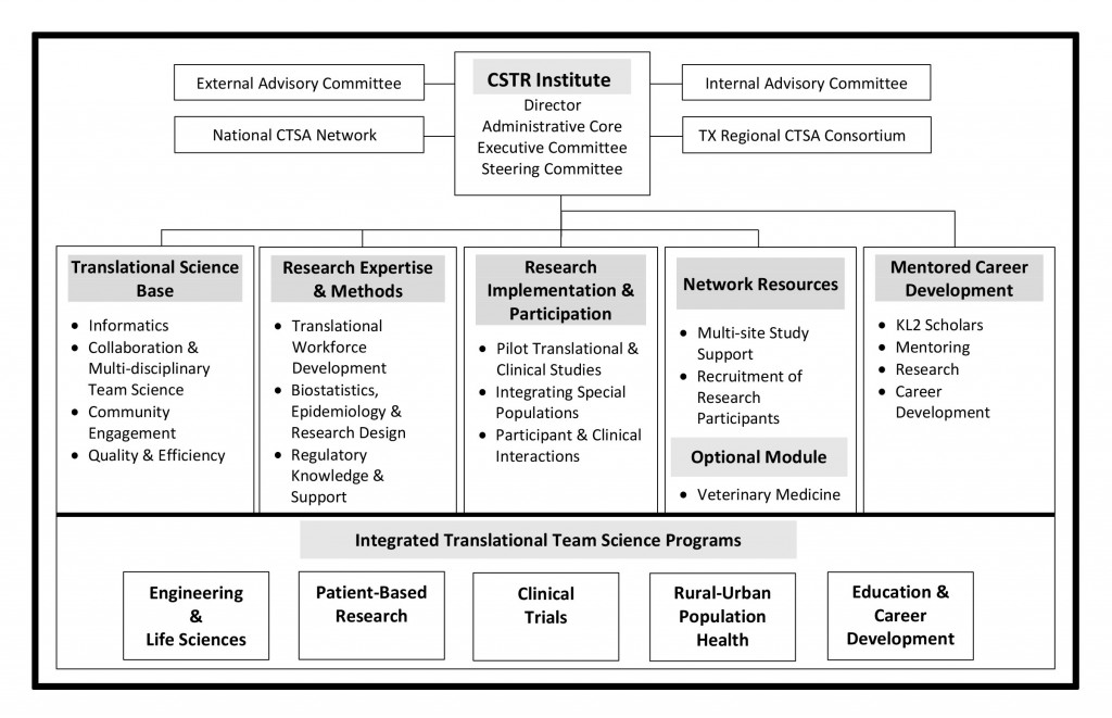 CSTR Institute Organizational Chart